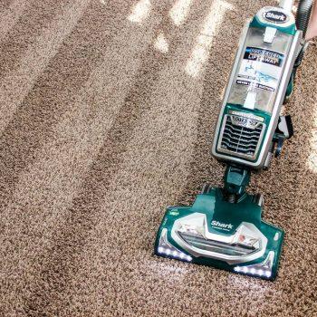 cara_membersihkan_karpet