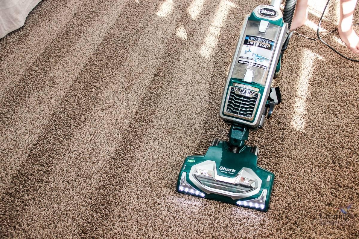 Haruskah Anda Menyewa Profesional Untuk Membersihkan Karpet Anda?